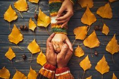 Family support. Autumn couple embrace shands top view,fall ash. Leaf,Autumnal mood,  relationship   concept Stock Photo