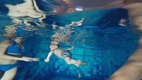 The family is swimming in the pool. A successful attempt to teach a young son to swim under water. The family is swimming in the pool. A successful attempt to stock footage