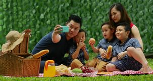 Family taking selfie picture on the park stock footage