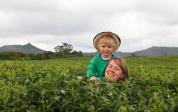 Family in tea plantation Stock Photo