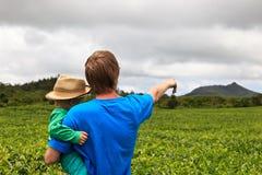 Family in tea plantation Royalty Free Stock Photography