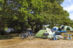 Family tents in camping site under the oak trees Stock Photos