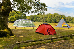 Family tents in a forest campsite Royalty Free Stock Images
