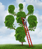 Family Therapy. And group health care concept with a tree shaped as a group of human heads with a medical doctor psychologist or psychiatrist on a ladder fixing Royalty Free Stock Images