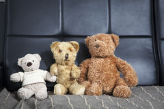Family of three old vintage teddy-bear sitting on sofa Royalty Free Stock Images