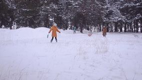 Family and three people with a dog are on snow in the winter in park, walk in park with dog in winter on snow background stock footage