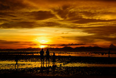 Family time at the beach. The family walk on the beach and see the beautiful sunset royalty free stock photography