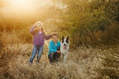 Family. Brother, sister and dog. Stock Image