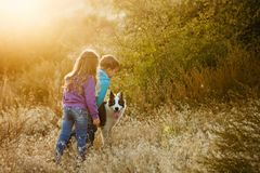 Family. Brother, sister and dog. Royalty Free Stock Images
