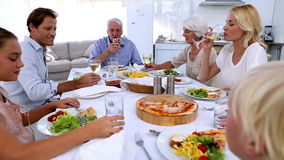 Family toasting at dinner table stock footage