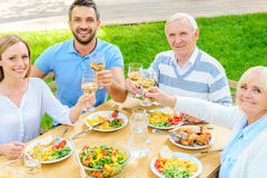 Family toasting with wine. Stock Photos
