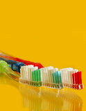 Family Tooth Brush Set Royalty Free Stock Photo