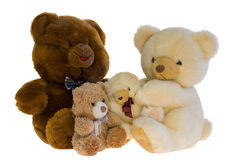Family of toy teddy bears. Mom, dad and two young cubs Stock Photos