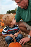 Family Tradition. Young boy looks up to family member while picking out pumpkin Stock Photography