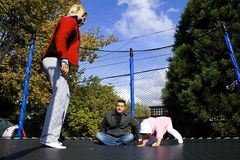Family on the Trampoline Playing Stock Image