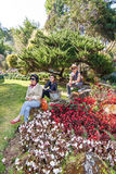 The family travels at The Royal Agricultural Station Inthanon Stock Photo