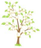 Family tree. Genealogical family tree. Green tree. Vector illustration, isolated on a white Stock Photo