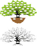 Family tree. Genealogical illustration vector Stock Photography