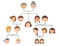 Family tree. Illustration of isolated family tree Royalty Free Stock Images