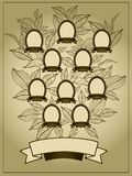 Family Tree background. Vector illustration of family tree. Genealogy template vector illustration