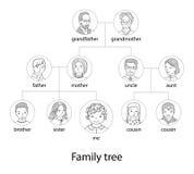 Family tree chart thin line style vector Stock Image