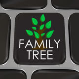 Family Tree Computer Laptop Keyboard Key Button Research History. A computer keyboard key with the words Family Tree and picture to symbolize researching your royalty free illustration