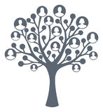 Family tree concept. On white royalty free illustration