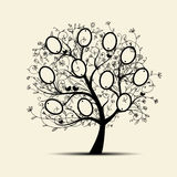 Family tree design, insert your photos into frames Stock Images