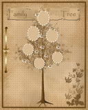 Family tree design for your photos into frames. On vintage background vector illustration