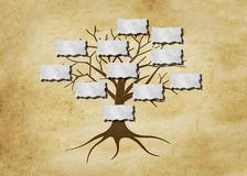 Family tree illustration. For your design vector illustration