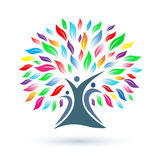 Family tree logo. A family tree with colored leaves logo Stock Images