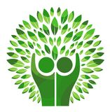Family  Tree Logo. A family tree with leaves logo icon isolated in white background Royalty Free Stock Photos