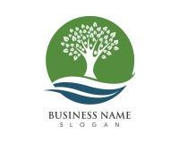 Family tree logo template. Vector illustration Stock Photo