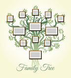 Family tree with photo frames vector illustration. Parents and children pictures, dynasty of generations Stock Photo