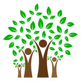Family tree. Simple illustration of family tree on white background stock illustration