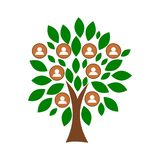Family tree template with people icons. On white background stock illustration