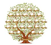 Family Tree template vintage vector illustration Stock Images