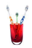 Family tree toothbrush in red glass Stock Photos