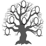 Family tree.Vector illustration. Royalty Free Stock Photography