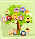 Family tree vector illustration Royalty Free Stock Photography