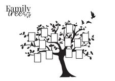Family Tree Vector with Picture Frame, Wall Decals, Wall Decor, Flying Birds Silhouette on a tree. Isolated on white background. Art Design stock illustration
