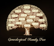 Family tree in vintage style. Genealogy, pedigree, dynasty Stock Photos