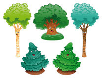 Family of trees royalty free stock image