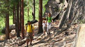 Family on a trekking day in forest stock video