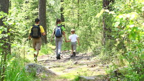 Family on a trekking day in forest. Family of three on a trekking summer day in countryside stock footage