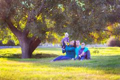 The family with two children sits under a tree in the park. The family with two children walks under a tree in the park Royalty Free Stock Image