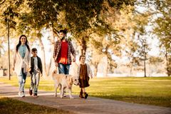 Family with two children walking down the road in autumn park. With a dog royalty free stock photography