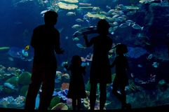 Family with two kids in oceanarium Royalty Free Stock Photos