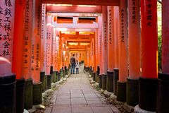 Fushimi inari in kyoto Stock Images
