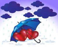 A family of umbrellas sheltering hearts Stock Photo